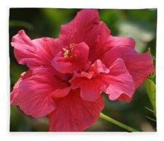 Red Hibiscus Flower 5 Fleece Blanket