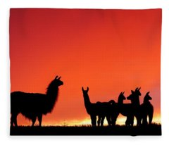 Red Llama Sunset 2 Fleece Blanket