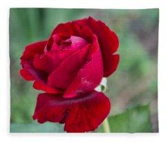Red Red Rose Fleece Blanket