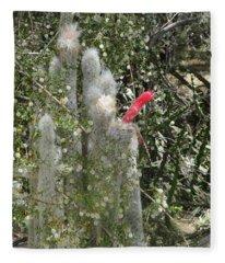 What A Rude Cactus Fleece Blanket