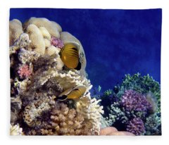 Red Sea Exotic World Fleece Blanket