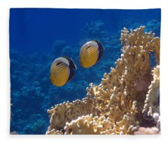 Red Sea Exquisite Butterflyfish  Fleece Blanket