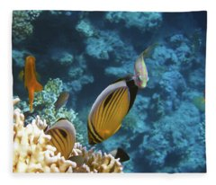Red Sea Magical World Fleece Blanket