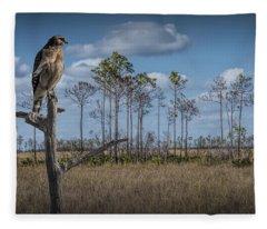 Red Shouldered Hawk In The Florida Everglades Fleece Blanket