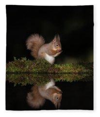 Red Squirrel Reflection Fleece Blanket