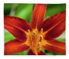 Red Star Fleece Blanket
