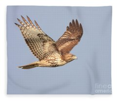 Red Tailed Hawk 20100101-1 Fleece Blanket