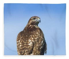 Red-tailed Hawk Perched Looking Back Over Shoulder Fleece Blanket