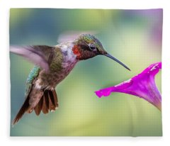 Fleece Blanket featuring the photograph Red Throated Hummingbird by Allin Sorenson