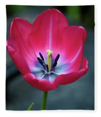 Red Tulip Blossom With Stamen And Petals And Pistil Fleece Blanket