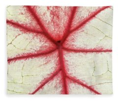 Red Veins Of A Coleus Plant Fleece Blanket