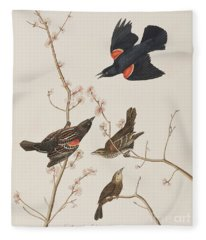Red Winged Starling Or Marsh Blackbird Fleece Blanket