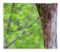 Redstart Fleece Blanket