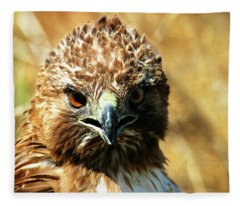 Redtail Hawk Fleece Blanket