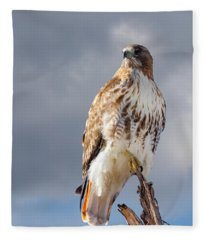 Redtail Portrait Fleece Blanket