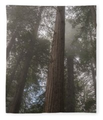 Redwood Fog California Fleece Blanket