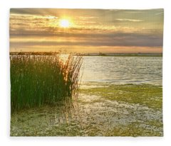 Reeds In The Sunset Fleece Blanket
