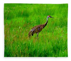 Regal Crane Fleece Blanket