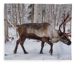 Reindeer  Fleece Blanket