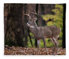 Relaxed Fleece Blanket