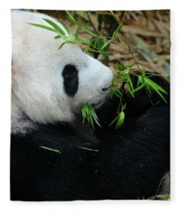 Relaxed Panda Bear Eats With Green Leaves In Mouth Fleece Blanket
