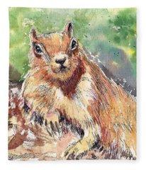 Relaxing Squirrel Fleece Blanket