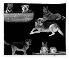 Remembering Phoenix Fleece Blanket