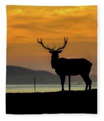 Reyes Morning  Fleece Blanket