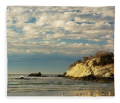 Rhode Island Beach In Winter Fleece Blanket