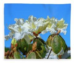 Rhododendron Ciliicalyx Dthn0213 Fleece Blanket