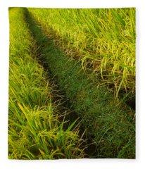 Rice Field Hiking Fleece Blanket