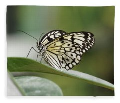 Fleece Blanket featuring the photograph Rice Paper Butterfly - 2 by Paul Gulliver