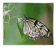 Rice Paper Butterfly Fleece Blanket