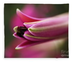 Rich Pink Lily Bud Fleece Blanket
