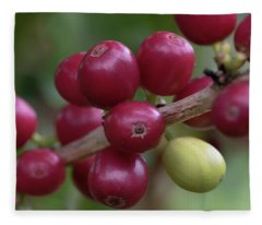 Ripe Kona Coffee Cherries Fleece Blanket