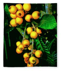 Ripe Loquats Fleece Blanket