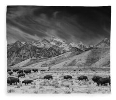 Roaming Bison In Black And White Fleece Blanket