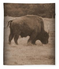 Roaming Bison Fleece Blanket