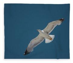 Roaming The Sky Fleece Blanket