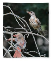 Robin And Cardinal 2664 Fleece Blanket