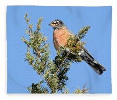 Robin On An Eastern Redcedar Tree Fleece Blanket