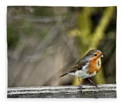 Robin On Fence Fleece Blanket