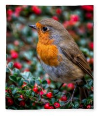 Robin Redbreast Fleece Blanket