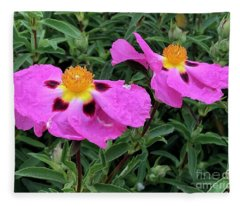 Rockrose Fleece Blanket