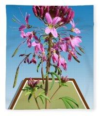 Rocky Mountain Bee Plant Fleece Blanket