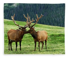 Rocky Mountain Elk 2 Fleece Blanket