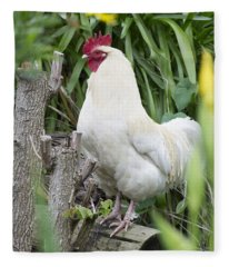 Fleece Blanket featuring the photograph Rooster by Jocelyn Friis