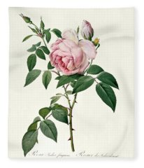 Rosa Chinensis And Rosa Gigantea Fleece Blanket
