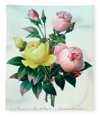 Rosa Lutea And Rosa Indica Fleece Blanket