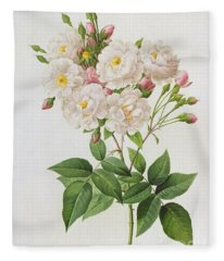 Rosa Noisettiana Fleece Blanket